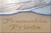 Framable Prints